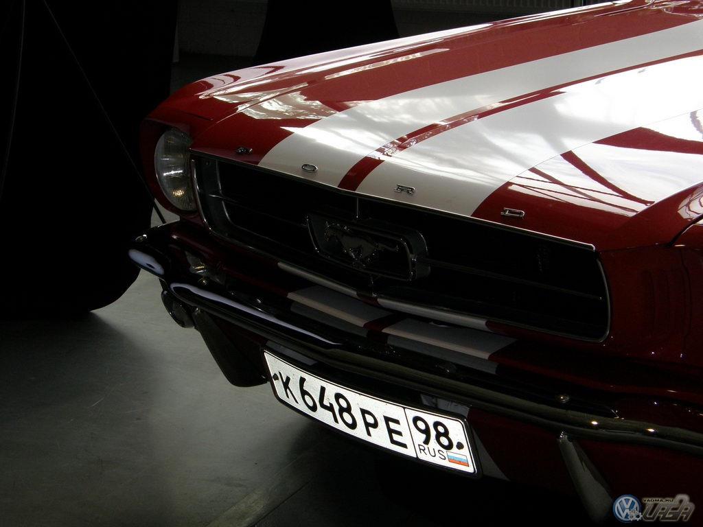 Auto_exhibition0007.JPG